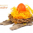 Easter egg in nest isolated on white — Stock Photo