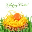 Royalty-Free Stock Photo: Easter egg in a decorative nest on the grass