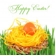 Easter egg in a decorative nest on the grass — Stock Photo