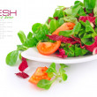 Stock Photo: Fresh mixed salad with tomatoes is in a dish