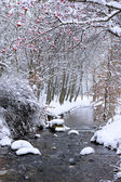 Winter landscape with small river — Stock Photo