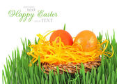 çimenlerin üzerinde dekoratif bir yuvada paskalya yortusu yumurta — Stok fotoğraf