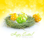 Colorful easter eggs are in a nest on festive background — ストック写真