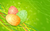 Easter eggs on a green spring background — Stock Photo