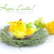 Easter eggs and nest with a hen and chickens on white background — Stock Photo