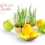 Paskalya yumurtaları ve beyaz zemin üzerine yeşil Brüksel lahanası — Stok fotoğraf