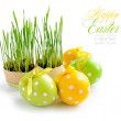 Easter eggs and green sprouts on a white background — Stock Photo #9834116