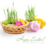 beyaz zemin üzerinde bir sepet içinde Paskalya yumurtaları ve yeşil lahanası vardır — Stok fotoğraf