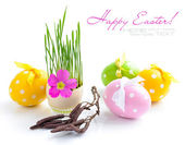 Easter eggs and green sprouts on a white background — Stock Photo