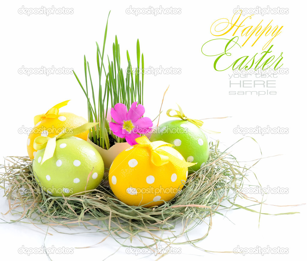 Easter eggs and green sprouts are in a nest on a white background — Stock Photo #9834221