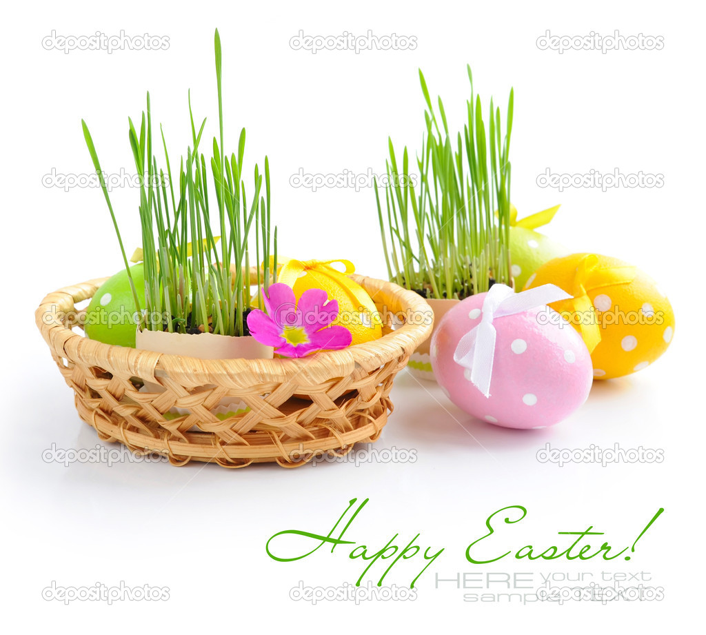 Easter eggs and green sprouts are in a basket on a white background  Stock Photo #9834445