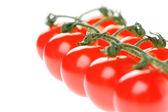 Close-up van tomaten — Stockfoto
