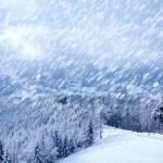 Beautiful winter landscape — Stock Photo #8349194