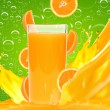 Orange juice — Stock Photo #9208601