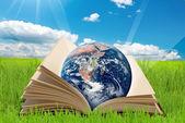 Book world — Stock Photo