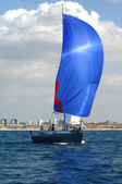 Racing yacht in a sea — Stock Photo