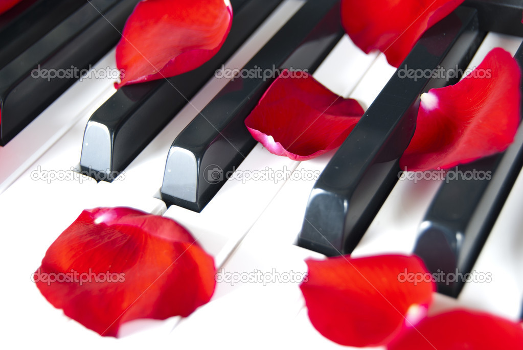 Piano with red petal rose — Stock Photo #9940736