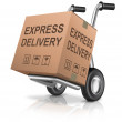 Express delivery cardboard box — Stock Photo #10100991