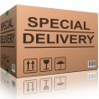 Stock Photo: Special delivery cardboard box