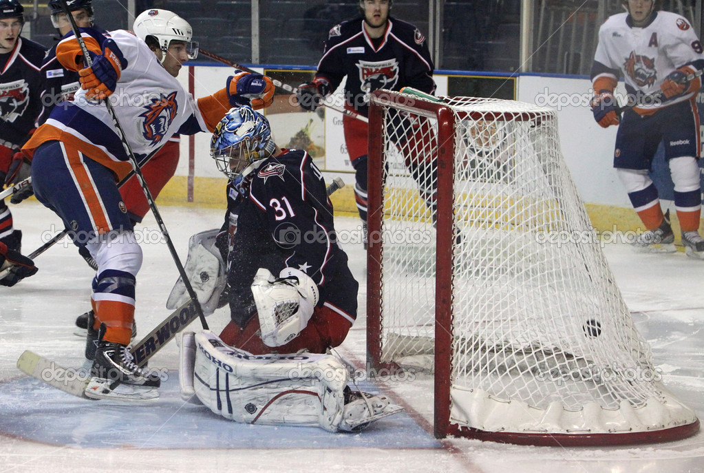 BRIDGEPORT, CT - MAR 30: Springfield Falcons goalie Paul Dainton (#31) fails to block the puck as Bridgeport Sound Tiger Tony Romano sends it into the net. The Sound Tigers defeated the Falcons 6-2 at the Webster Bank Arena on March 30, 2012 in Bridg — Stock Photo #9829168