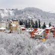 Stock Photo: winter landscape of sochi