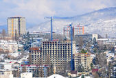 Sochi in winter — Stock Photo