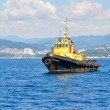 Yellow sea tow — Stock Photo