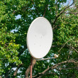Stock Photo: Satellite antenna