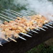 Barbecue — Stockfoto #10247040