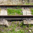 Old railroad — Stock Photo #10247457