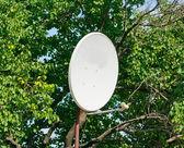 Satellietantenne — Stockfoto