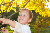 Portrait of a boy in autumn — Stock Photo