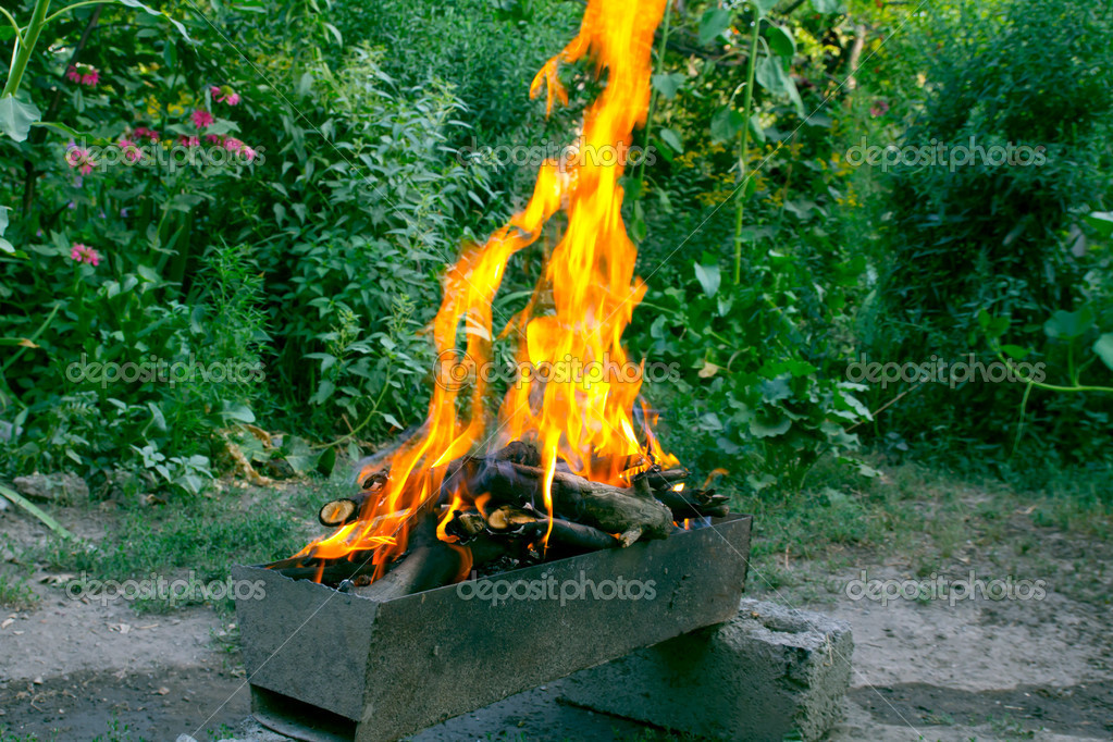 Fire in a brazier on the background of green forest  Stock Photo #10247013