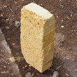 One brick — Stock Photo #8309957
