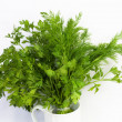 Dill and parsley at platw isolated on a white background — ストック写真