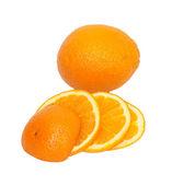 Isolated orange collection — Stock Photo