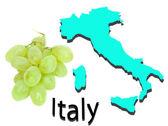 Kaart van italië en de druiven — Stockfoto