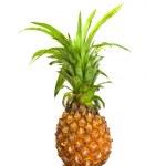 Ripe pineapple isolated on white — Stock Photo