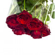 Beautiful red roses on a white background with space for copy. — Stock Photo #9008466