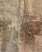 Wooden texture - can be used as a background — Stock Photo