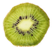 Kiwi macro extrême — Photo