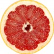 Red grapefruit close-up macro shot — Stock Photo