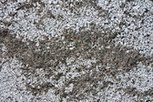 Ruwe zand als achtergrond — Stockfoto