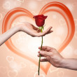 Man's hand giving a rose to a woman who carefuly takes it — Stock Photo