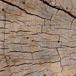 Background Texture Of Weathered Wood — Stock Photo
