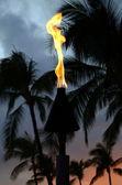 Hawaiian Tiki Torch At Sunset — Foto Stock