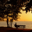 Man At Sunset Beach Park - Stock Photo