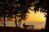 Man op sunset beach park — Stockfoto