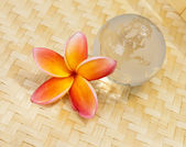 Yellow plumeria and crystal globe — Stock Photo