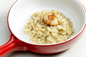 Fried Saint Jacques mollusc with pearl barley risotto — Stock Photo